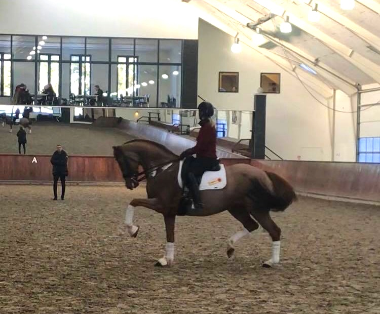 Charlotte Heering trying Badinda Altena at Helgstrand Dressage (captured from videoclip) - private photo.