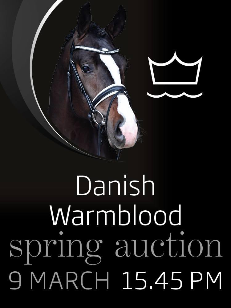 Spring Auction .jpg