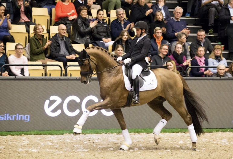 World Champion 6 year old horses in 2018 D´avie with Severo Jurado Lopez - photo credit. H2R