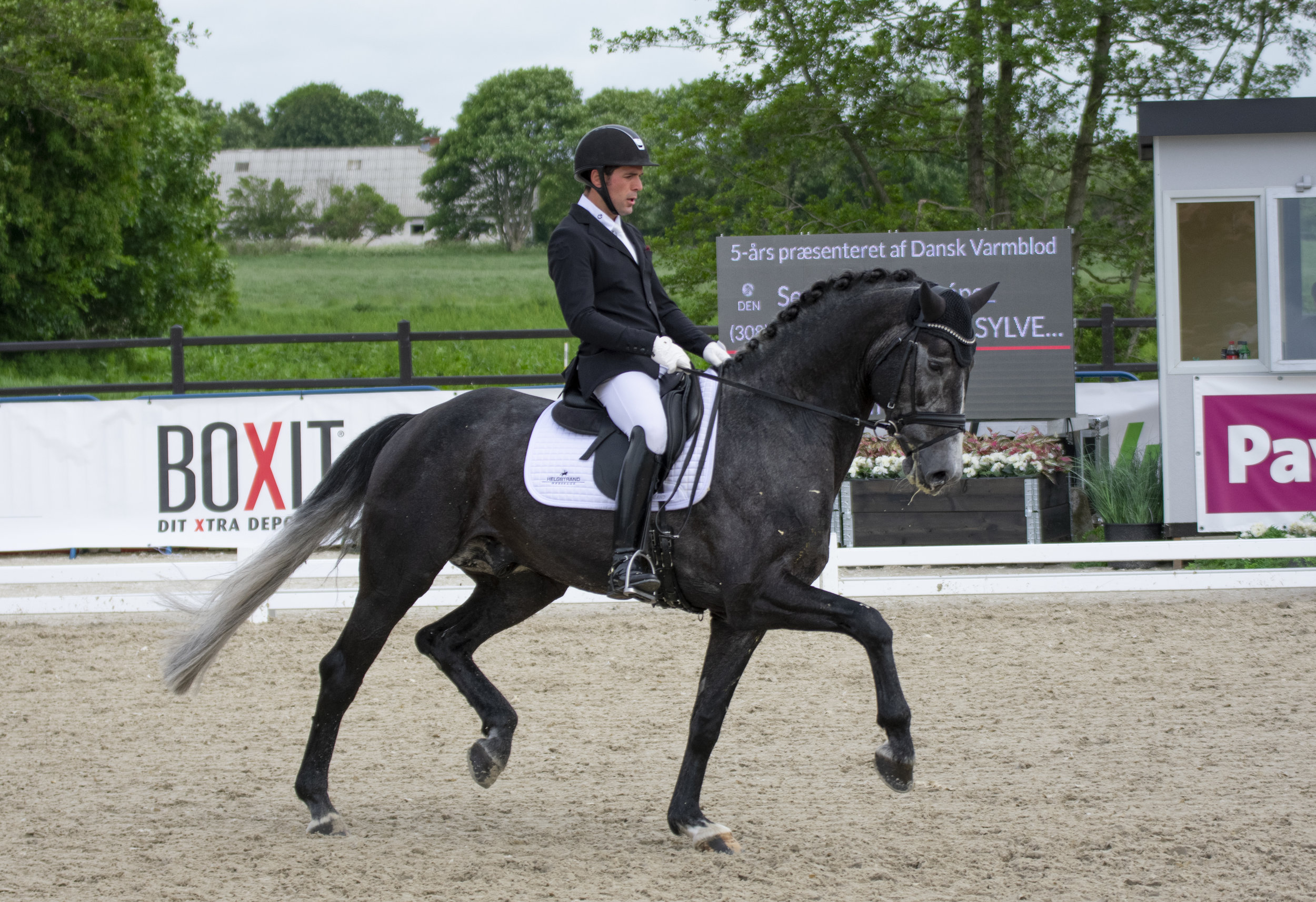 Tørvesletten Sylvester with Severo Jurado Lopez, new partnership and for sure a very sharp card for WCYH - photo credit: Mia Bach