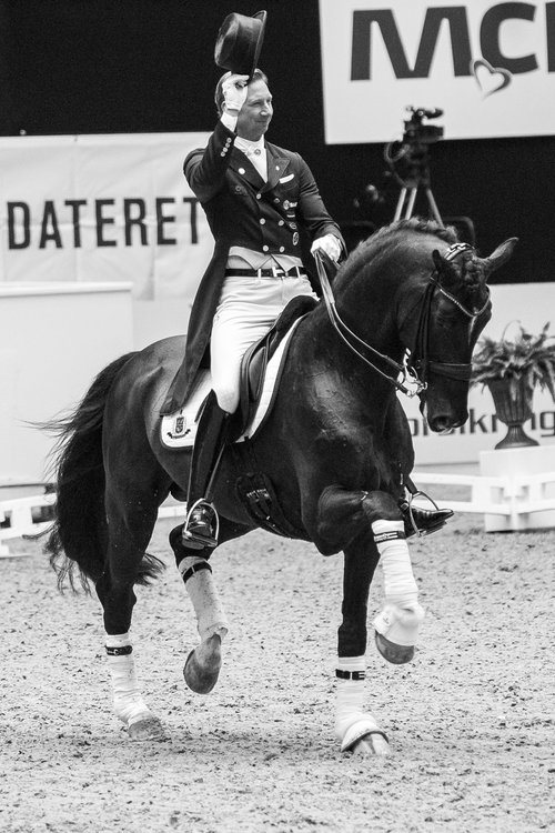 Sezuan and Patrik Kittel during Danish Warmblood stallion show - photo credit: H2R
