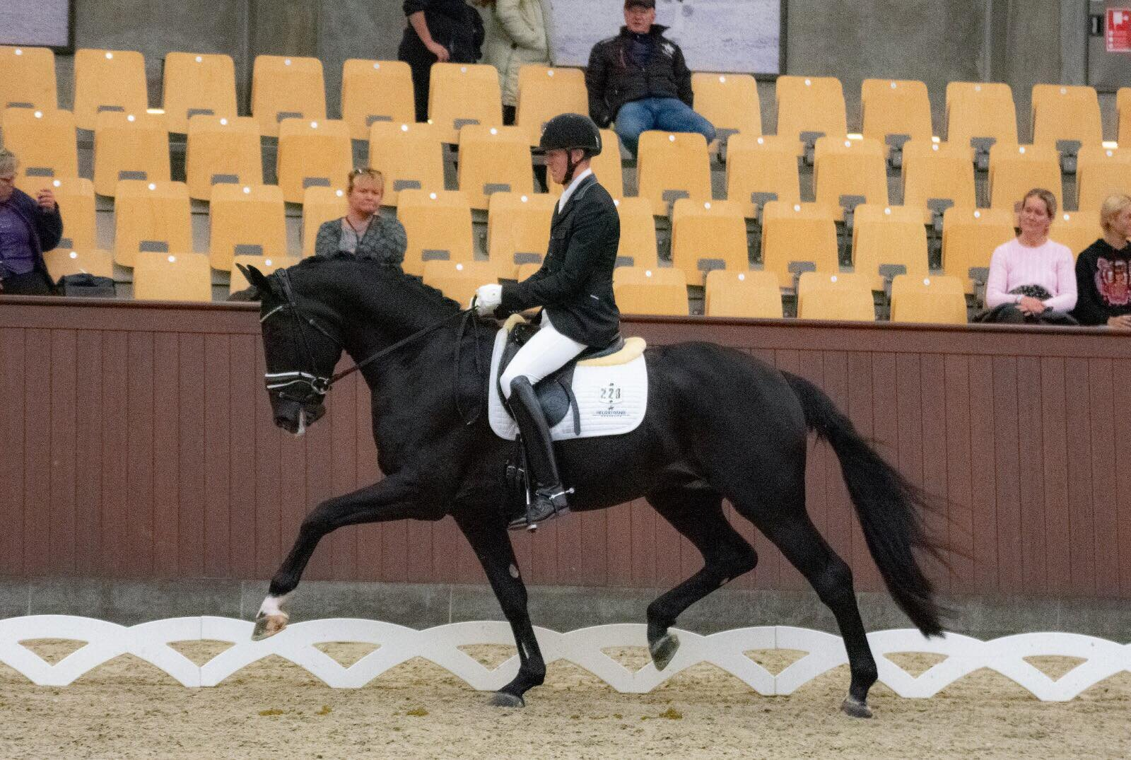 Kardieno by Dante Weltino / Parcival and Thomas Sigtenbjerggaard - photo credit: Helgstrand Dressage