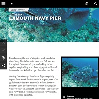 Click to read the Navy Pier description.