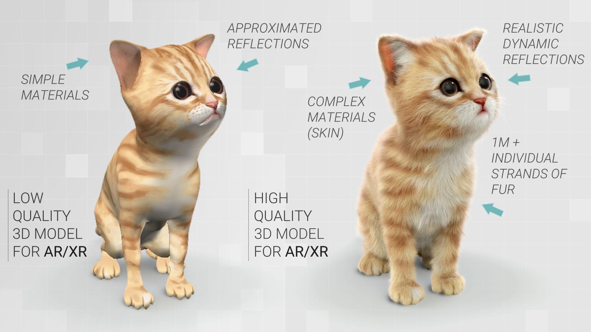 kitty_comparison.jpg