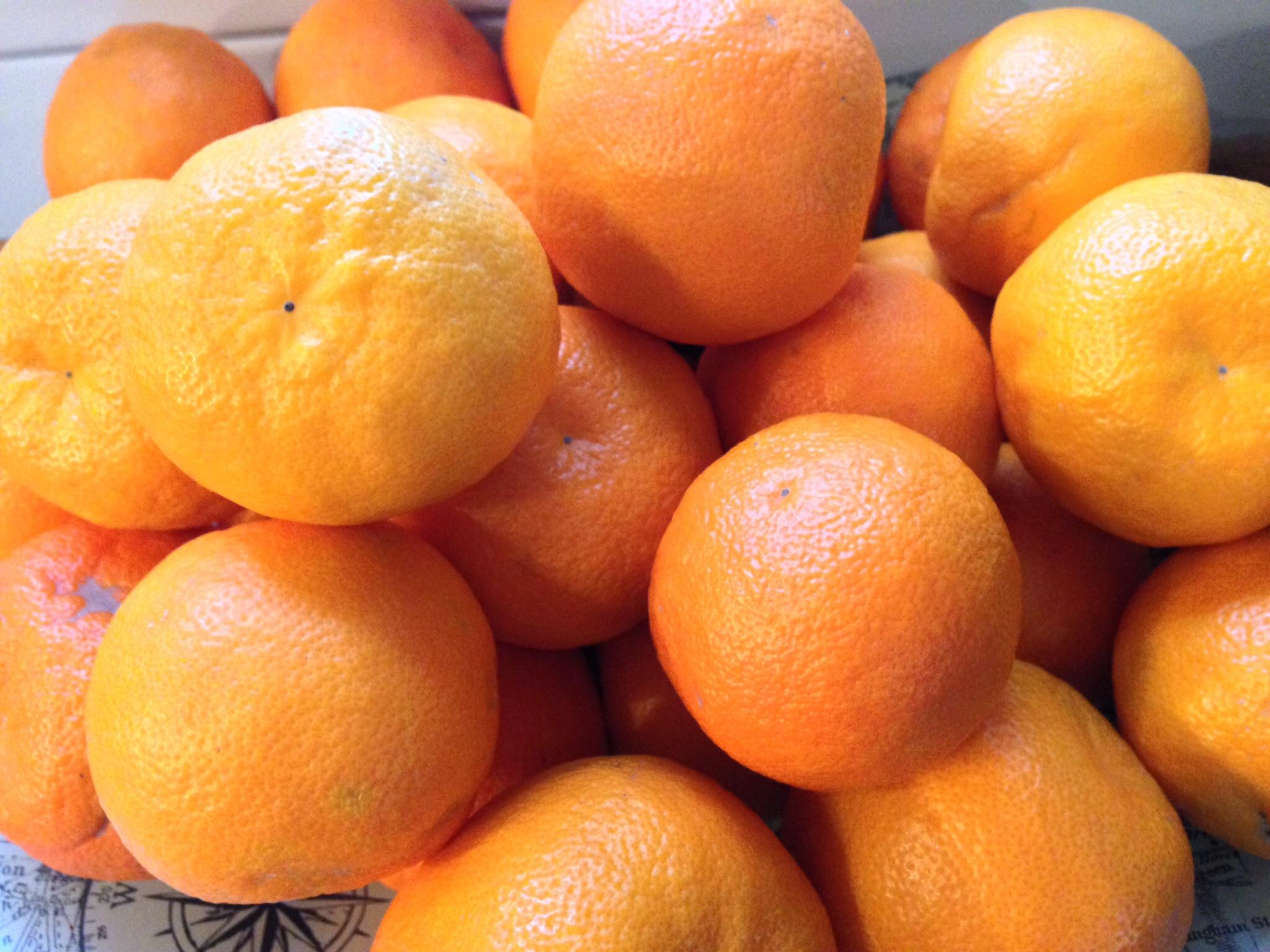 Seville oranges.