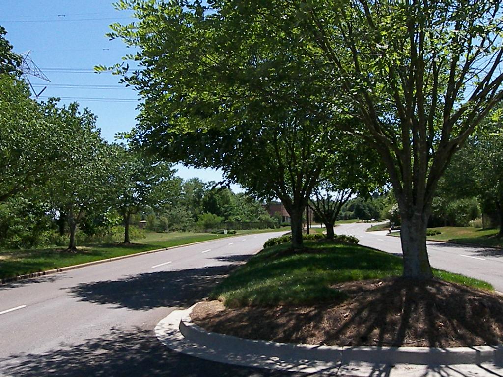 Land - Median-Divided Roadway.JPG
