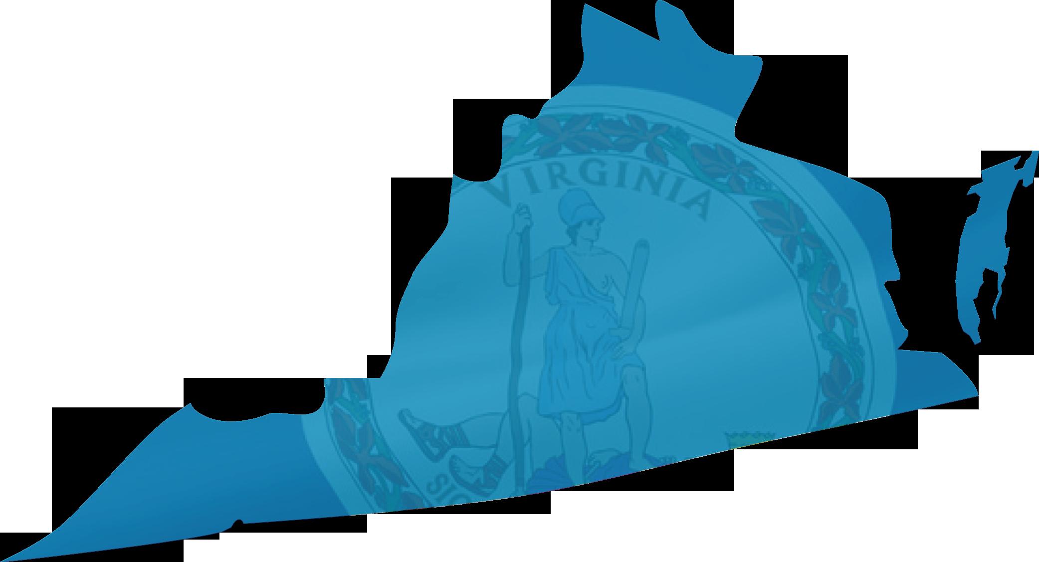 STATE - VIRGINIA   Virginia House of Delegates   Virginia Senate