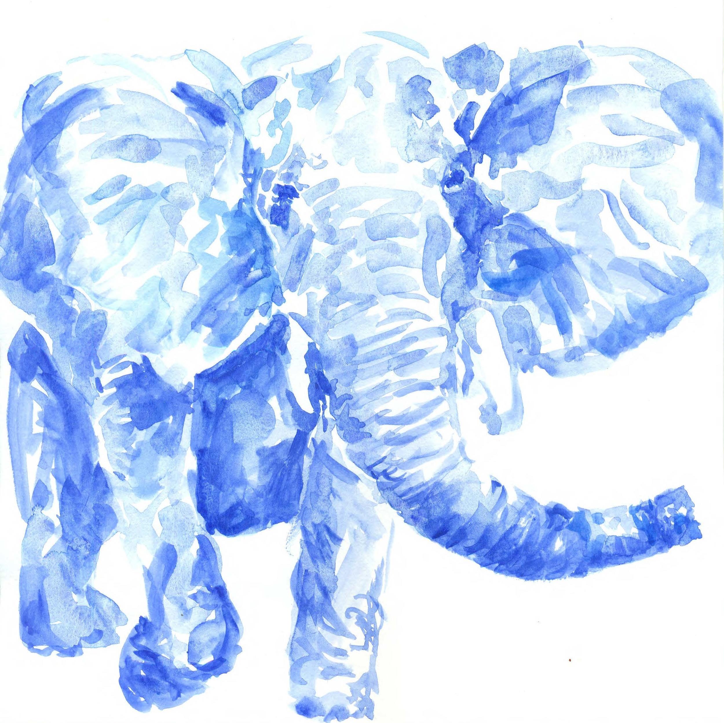 BlueElephant.jpg