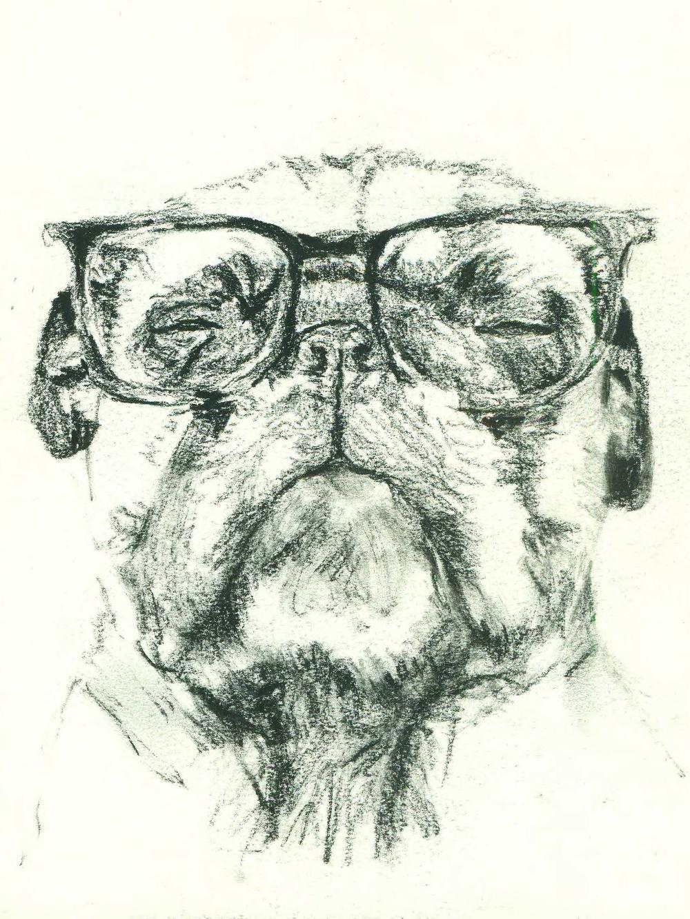 PugGlasses.jpg