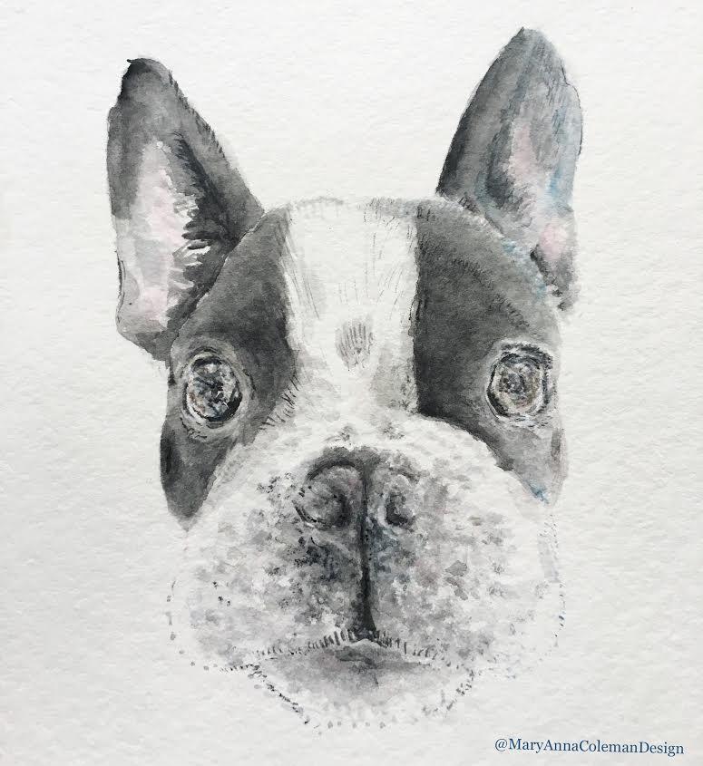 bw dog.jpg