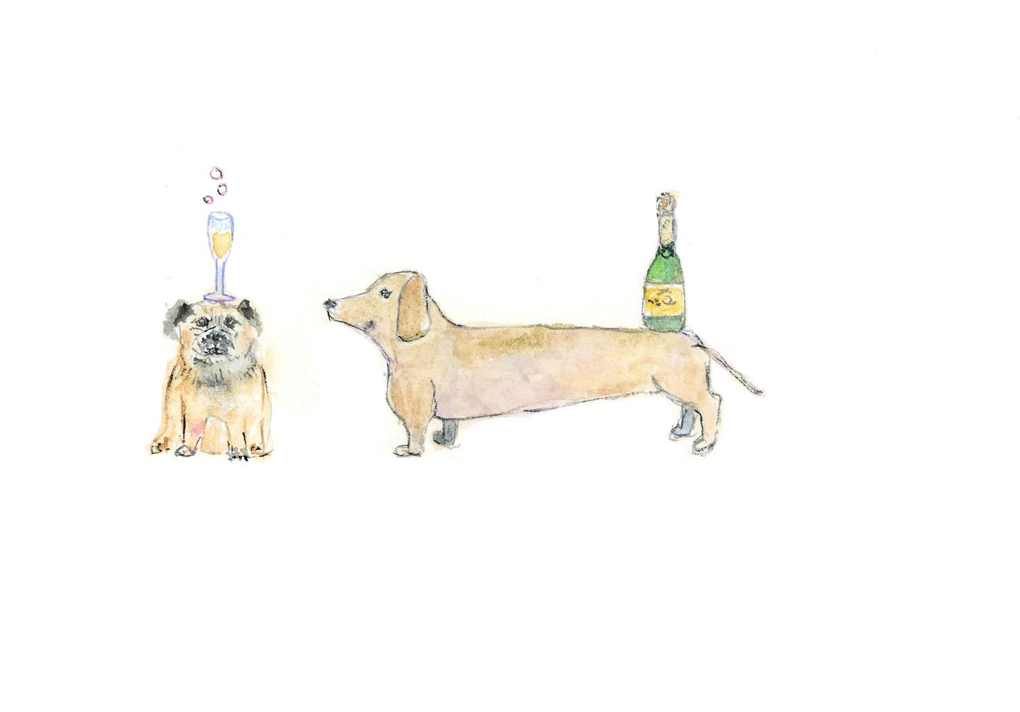 hotdogdogchamp.jpg