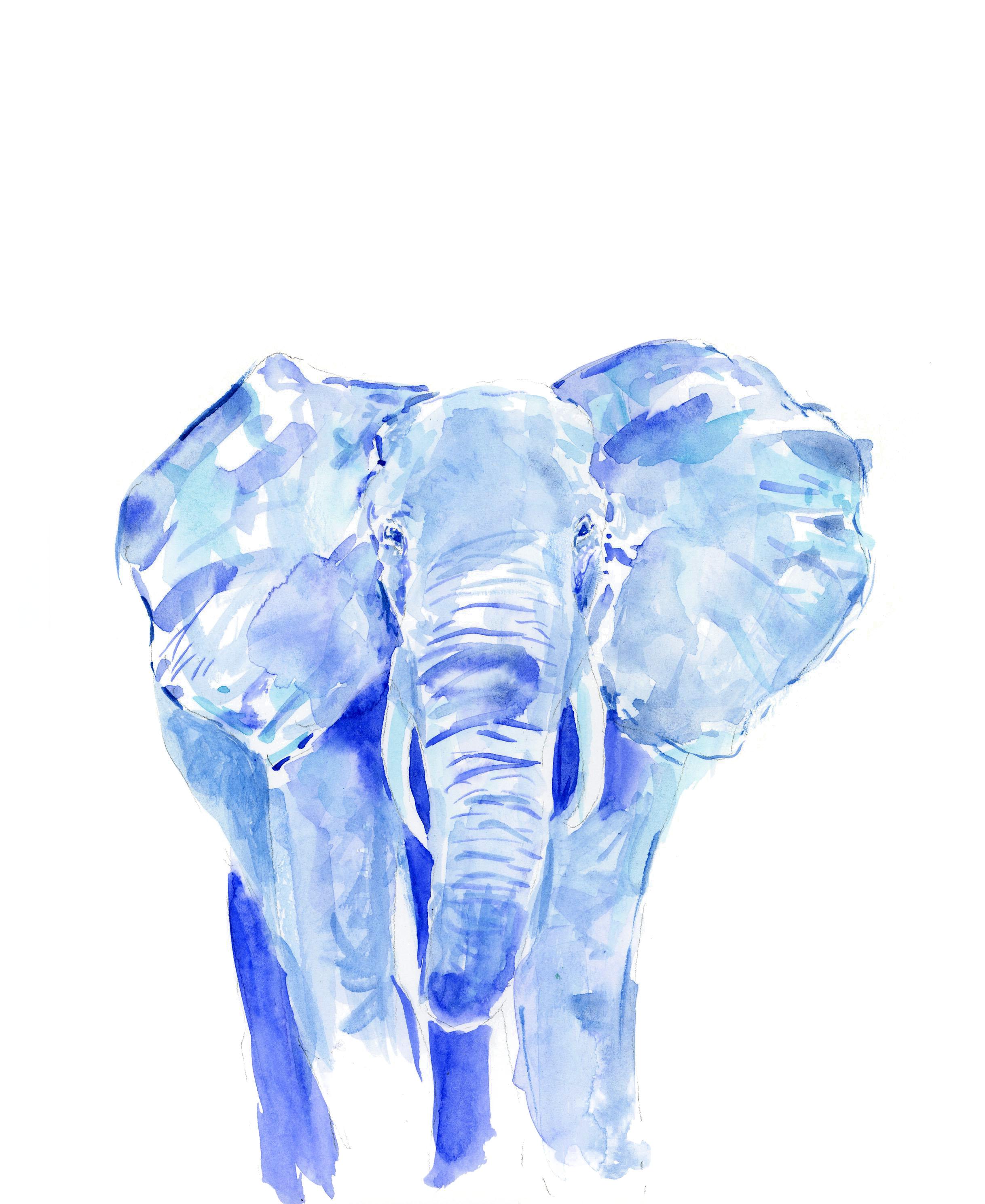 elephantBlue1edit.jpg