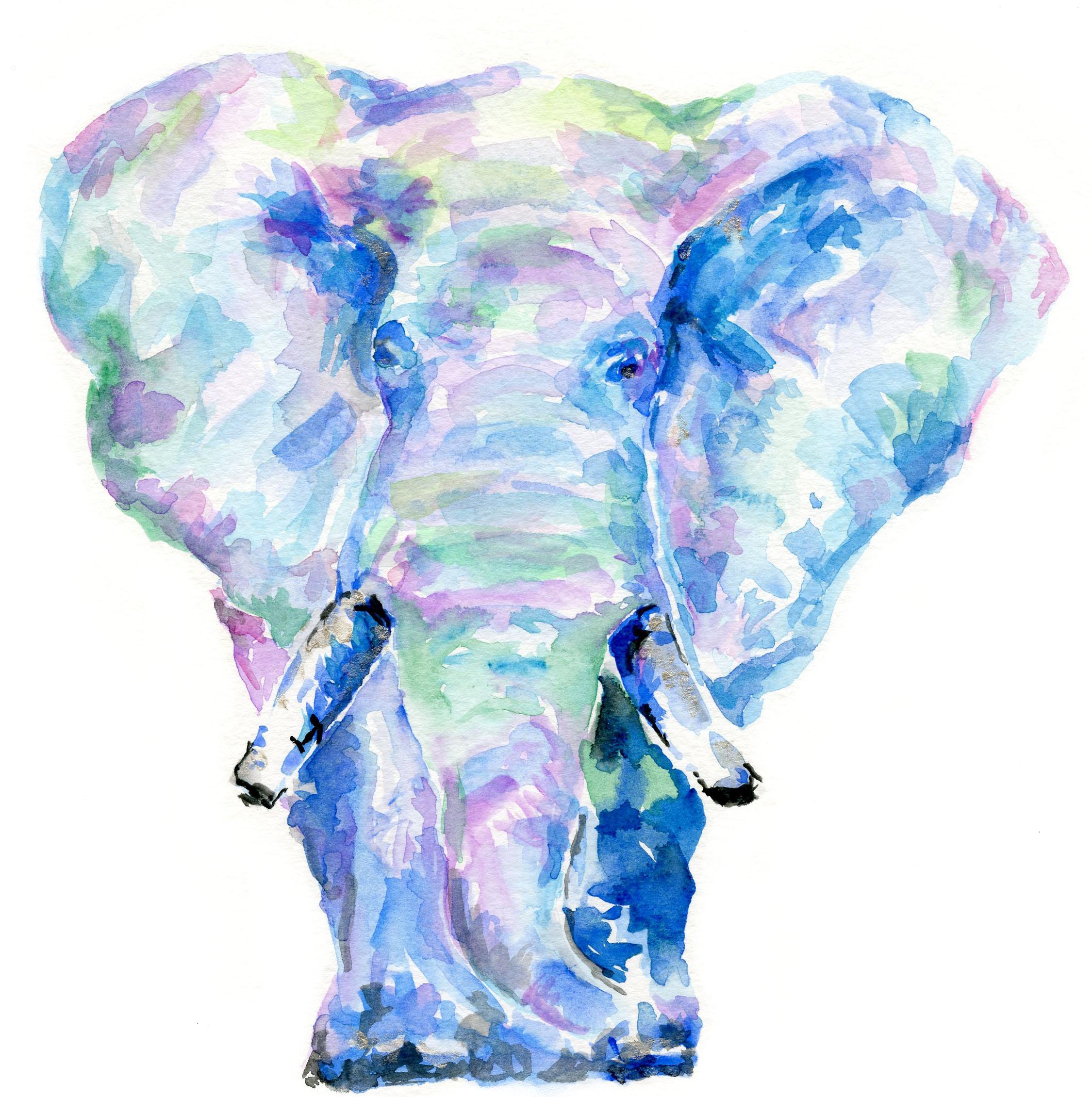 ElephantMulti2White.jpg