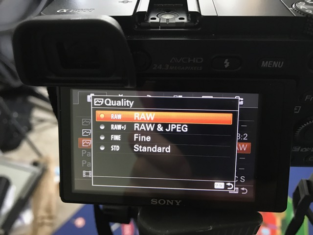 RAW file format - If you can, set your file format to RAW. RAW is uncompressed image, which gives you better image quality and more color range for you to tweak later. It is the best possible image you can get out of your camera!