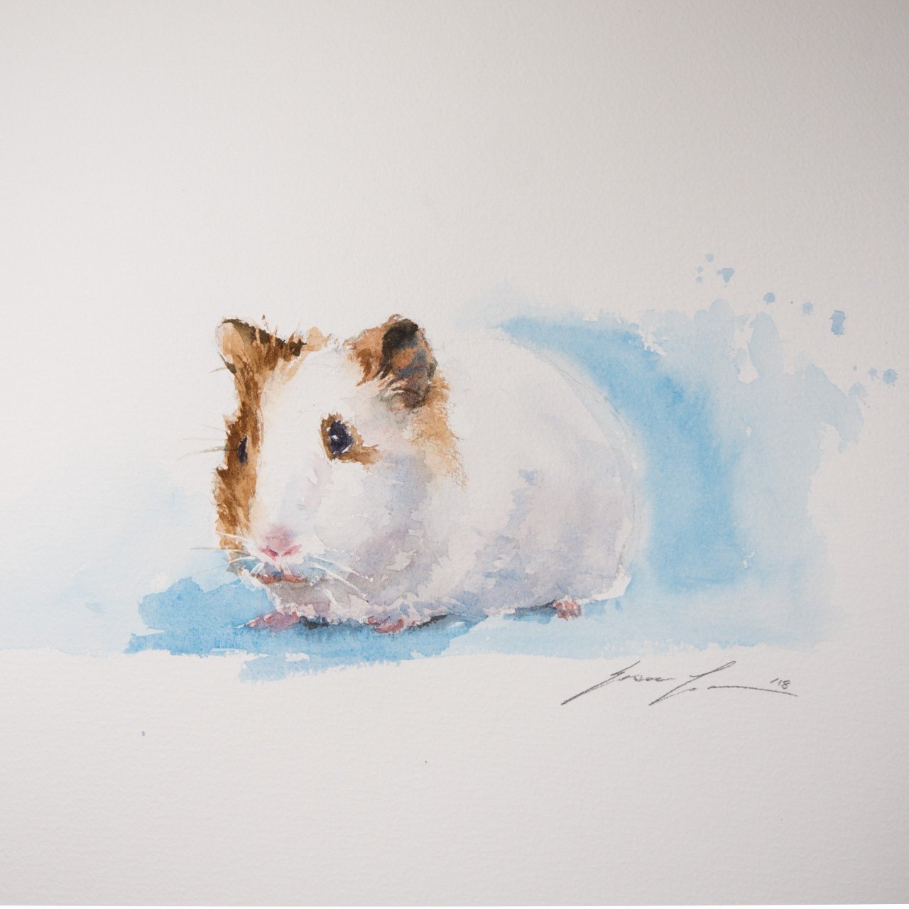 This is the first time I paint a guinea pig. I treat it as anything else I paint.