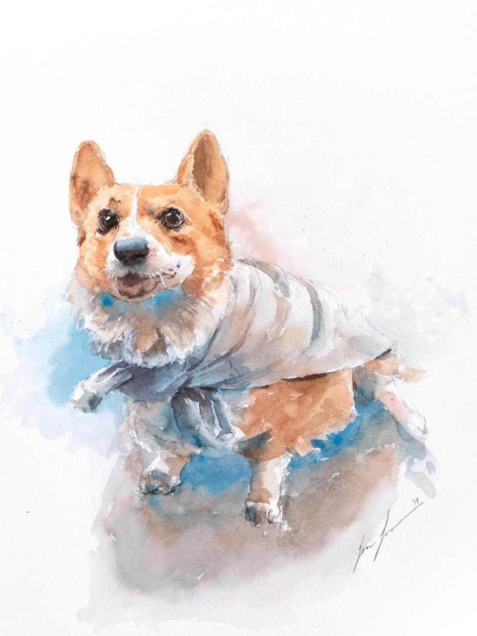Pet Portrait is also very popular!