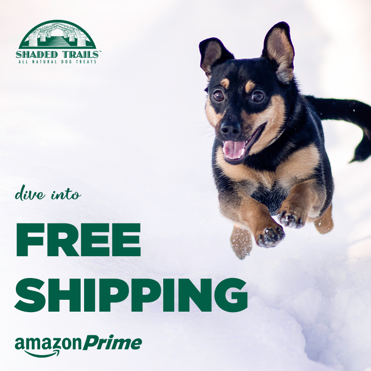 Dive-FreeShipping.png