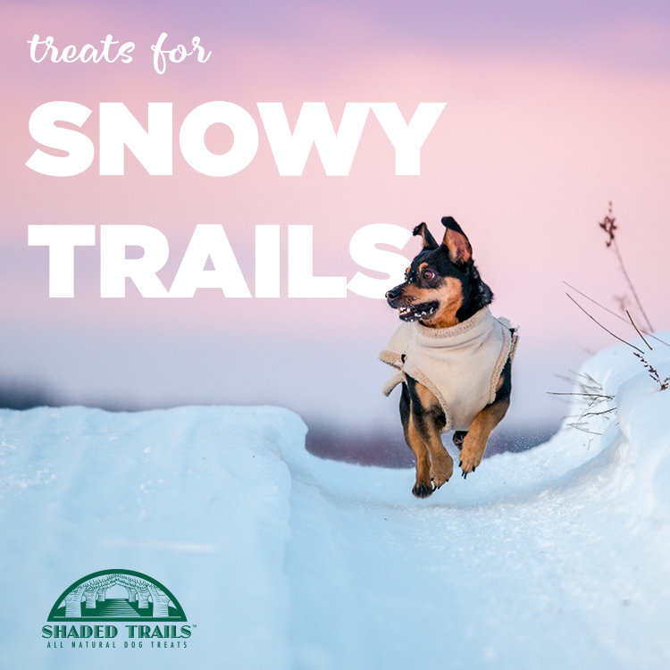 SnowyTrails.png