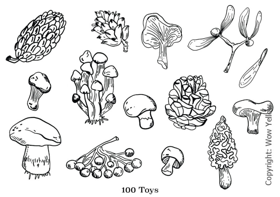 cones and mushrooms-01.png