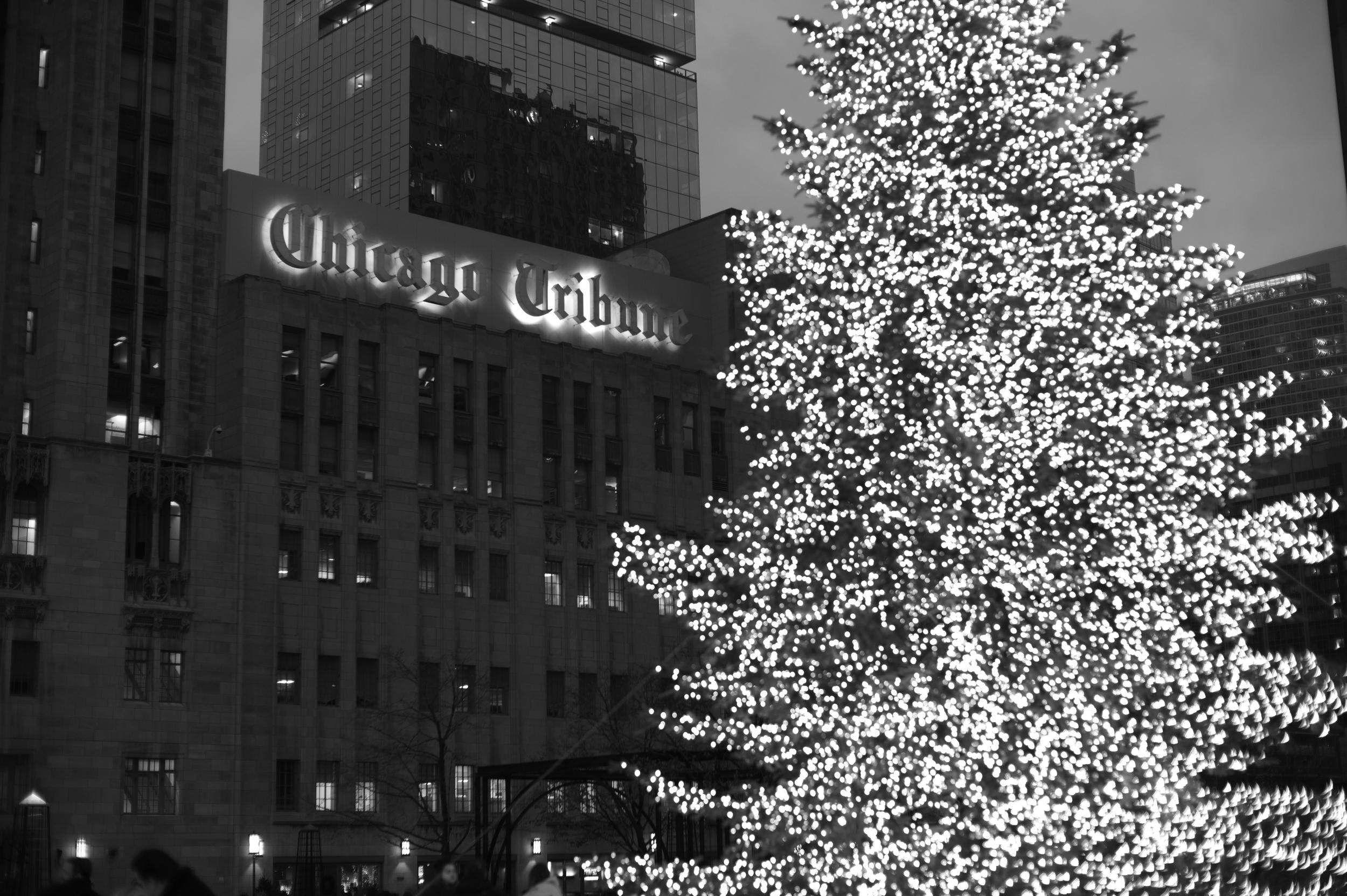 L1001147_Chicago 2014.JPG