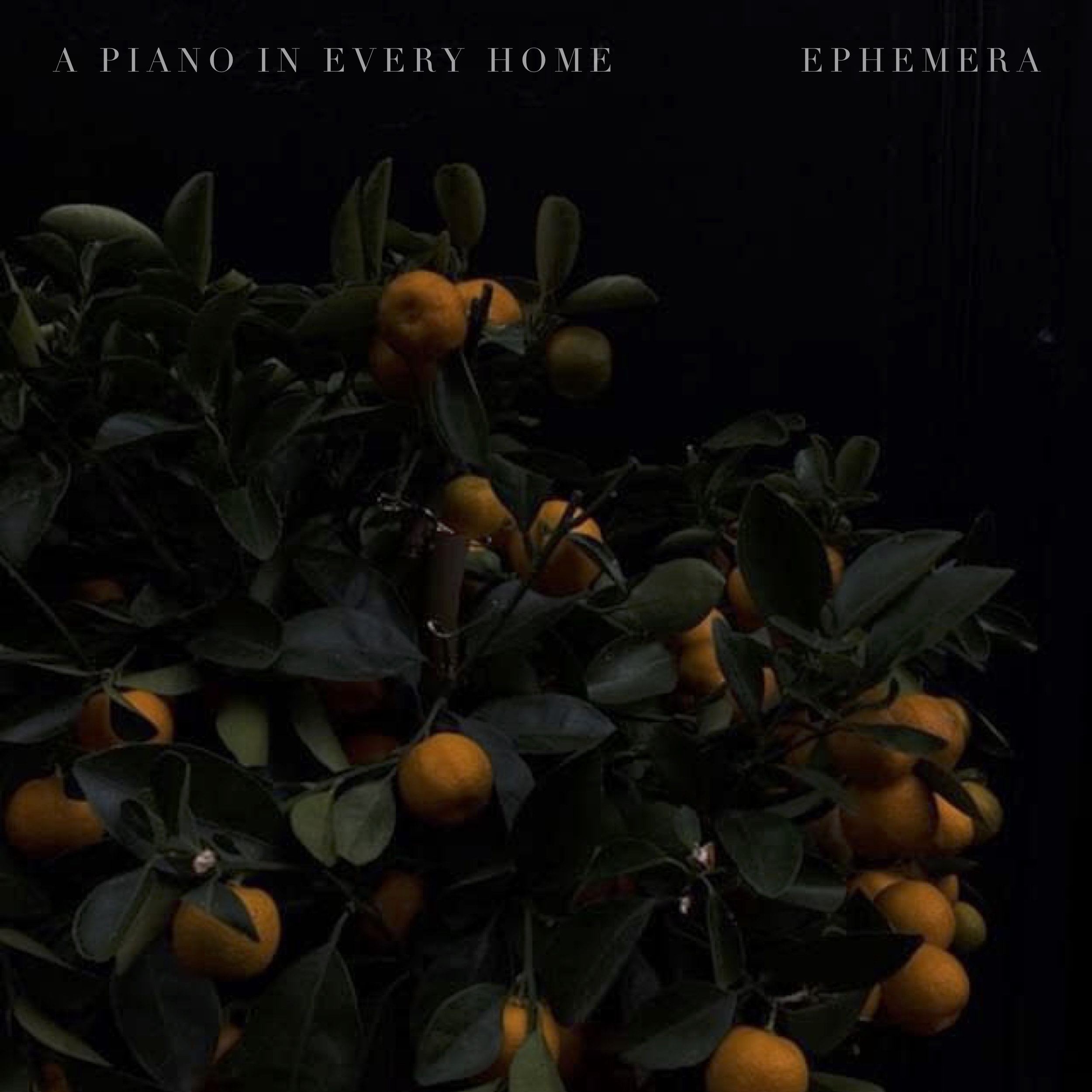Ephemera Album Cover 04.06.19.jpg