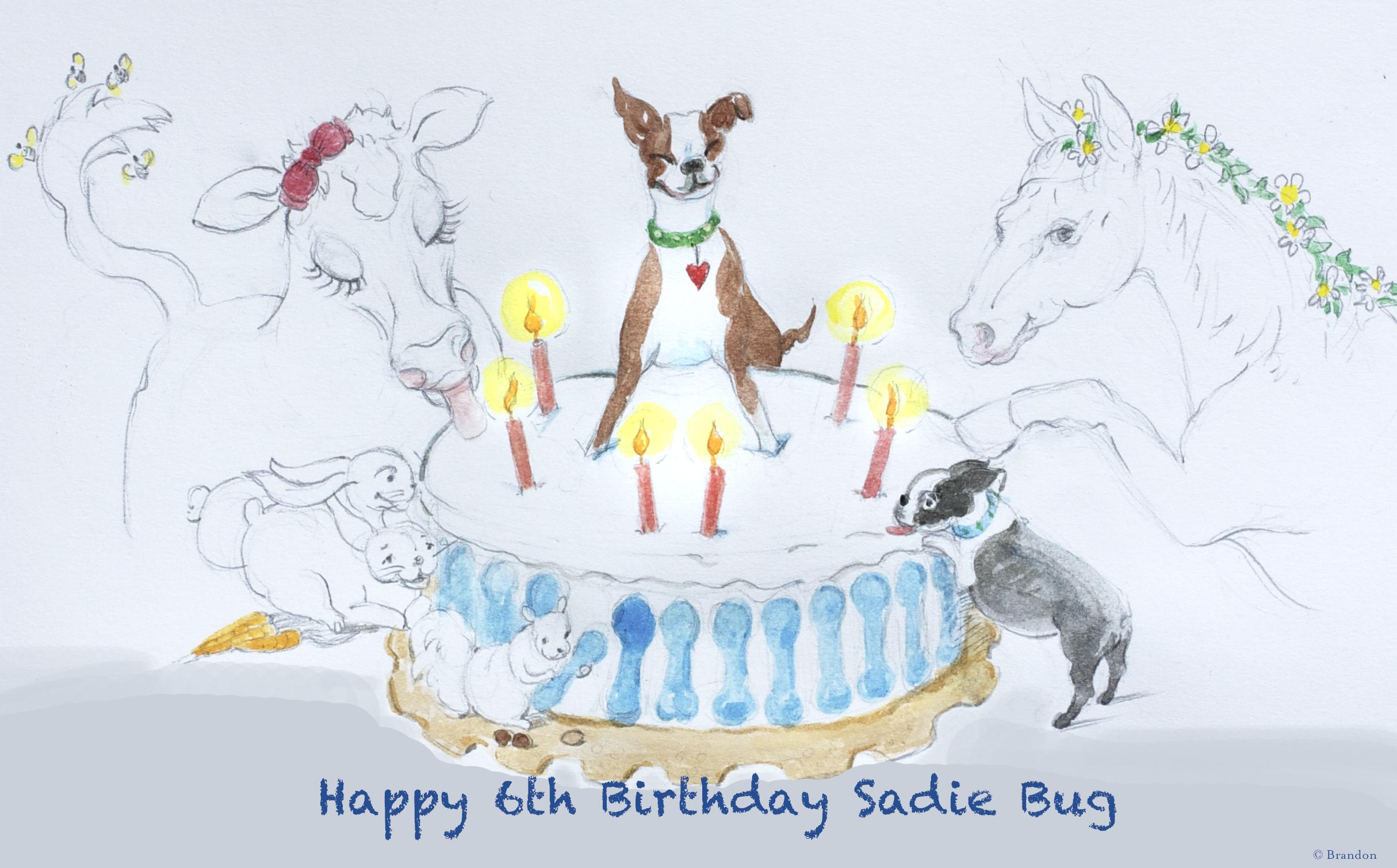 Sadie's Birthday