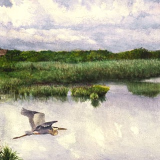 Hook Pond Heron (East Hampton, NY). Available for purchase on website--link in profile!