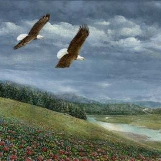 """""""On The Updraft""""--a gorgeous colorful scene, is available for purchase through the link in profile. #eagle #eagles #nature #wildlife #outdoors #color #colorful #art #artist #painting #painter"""