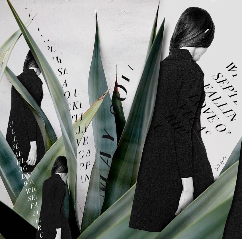 collage by Olga Montserrat