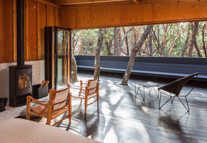 foresthouse7.jpg