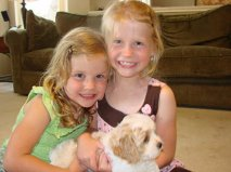 cavachon puppy with two girls review
