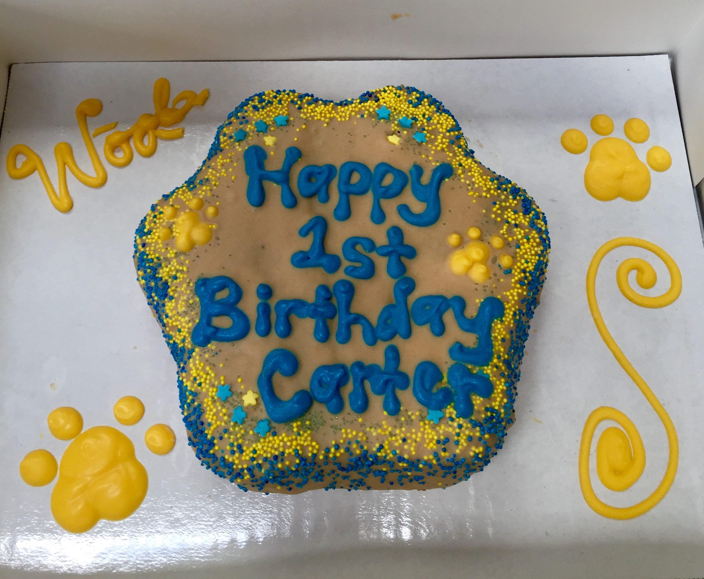 Carter the Cavapoo's birthday cake