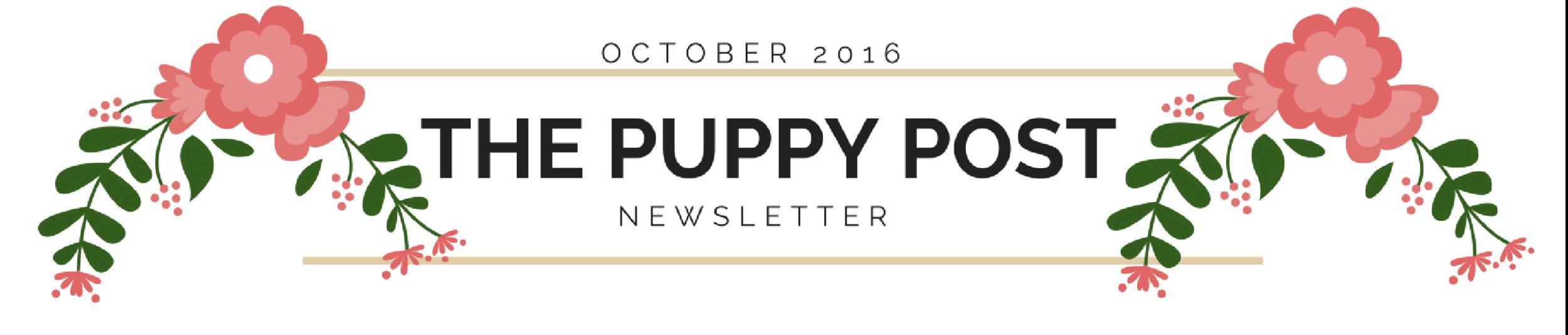 newpuppynewsletter