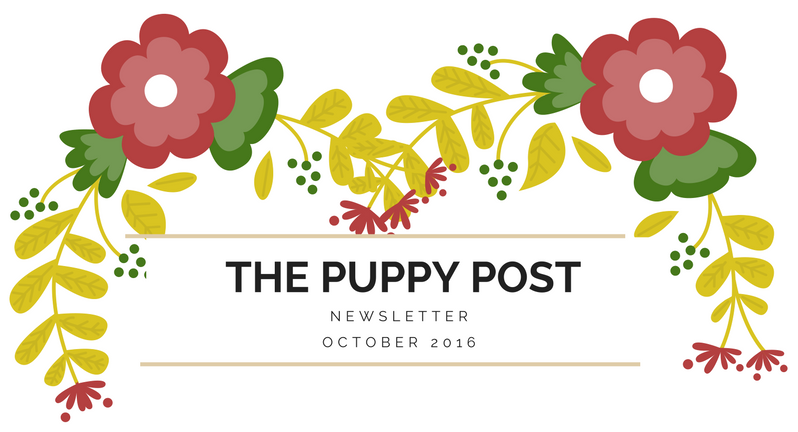 The Puppy Post (1).png