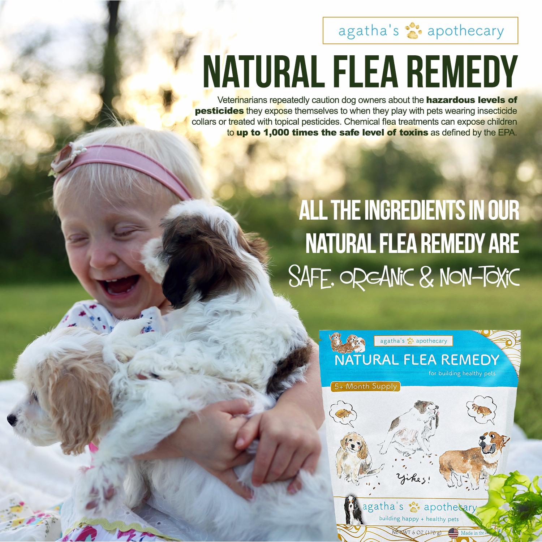 Natural Flea Remedy
