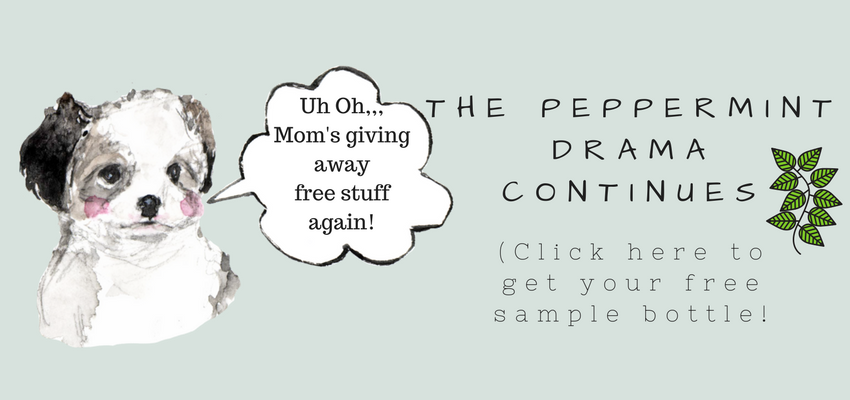The Peppermint Drama Contines (2).png