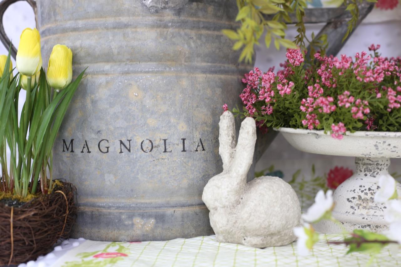 Magnolia puppy blog post