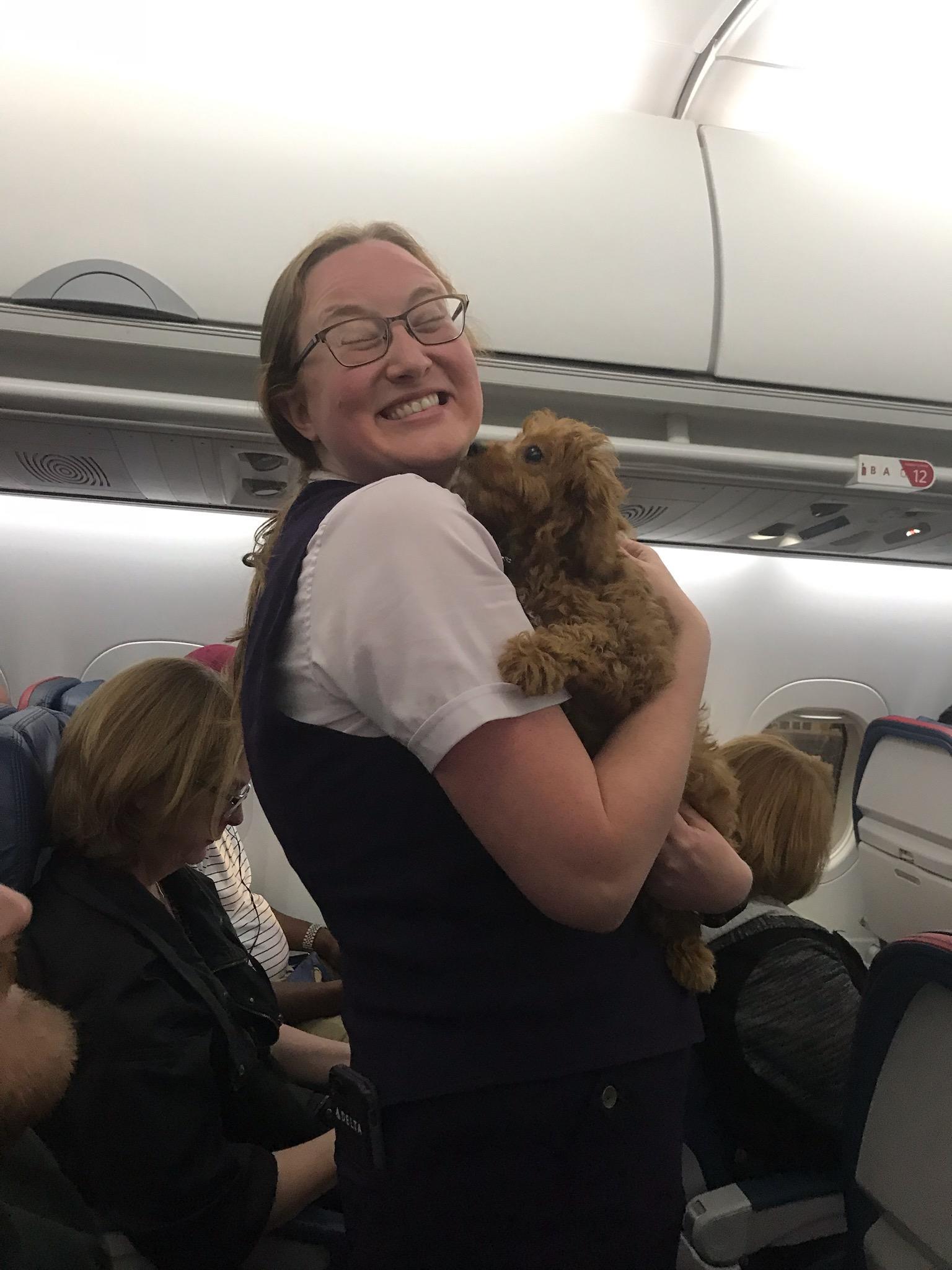 A flight attendant enjoying a few puppy kisses from a recent puppy flight.