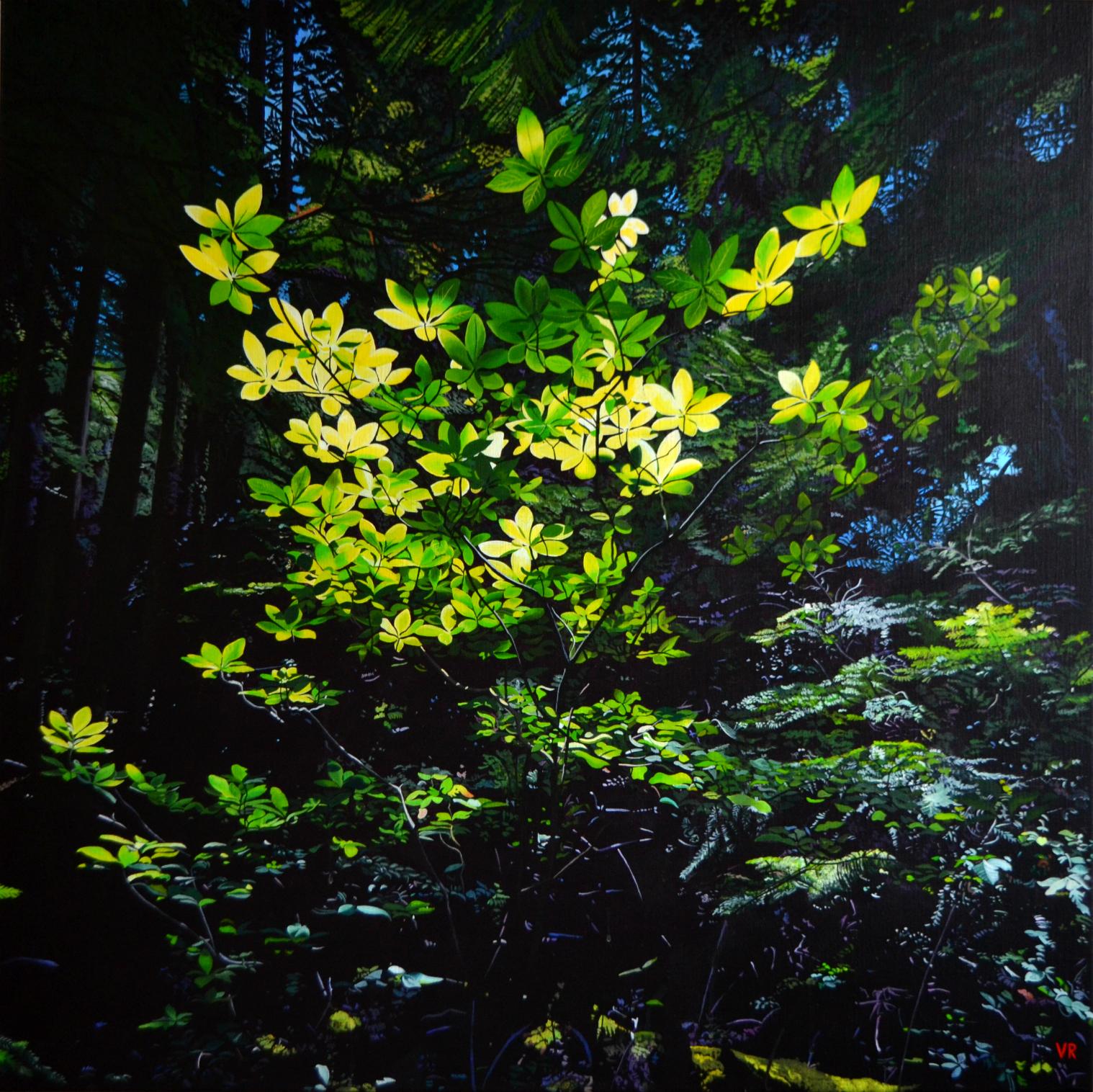Huckleberry Fairies    40 x 40    acrylic on canvas
