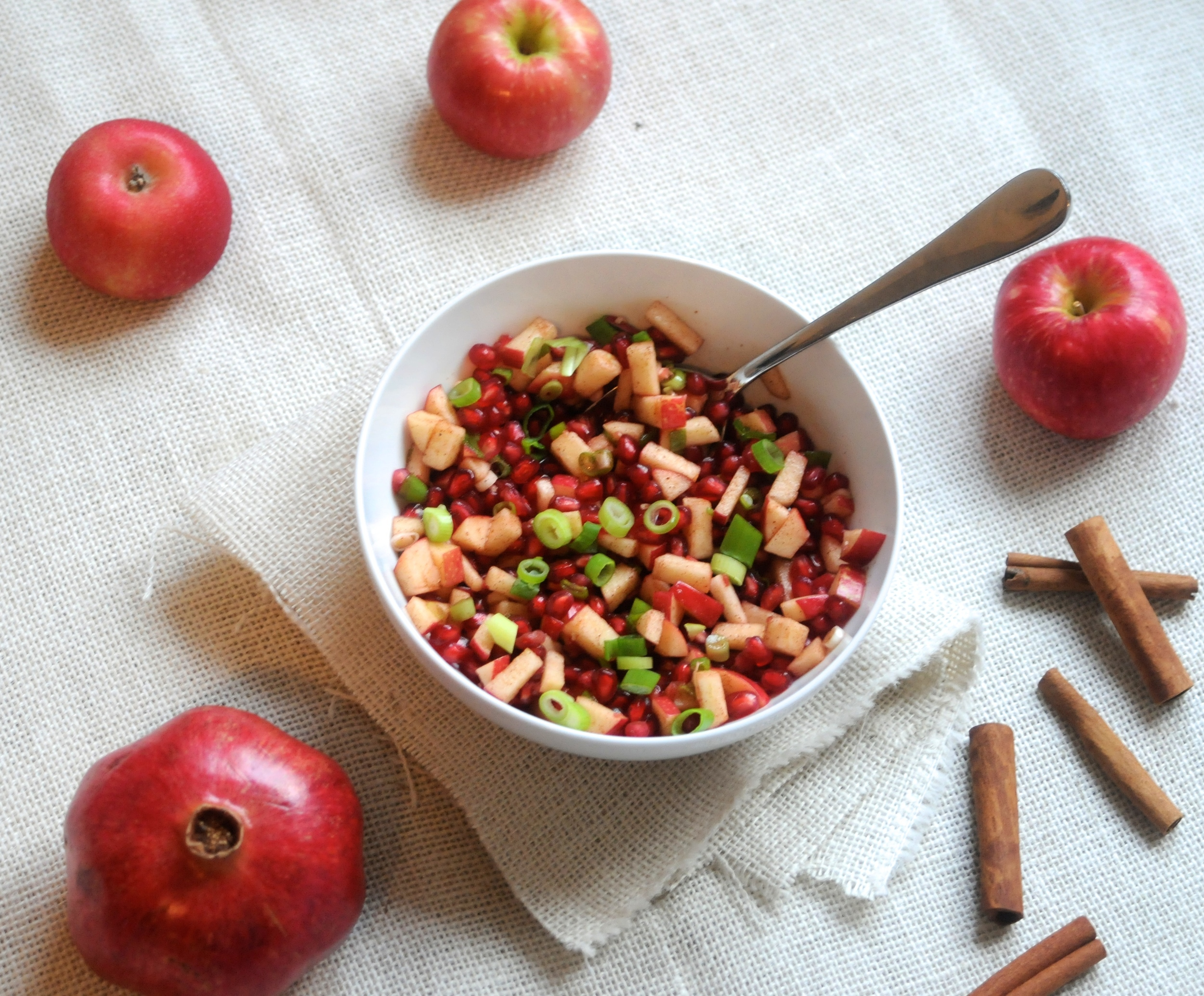 apple cinnamon pomegranate salsa
