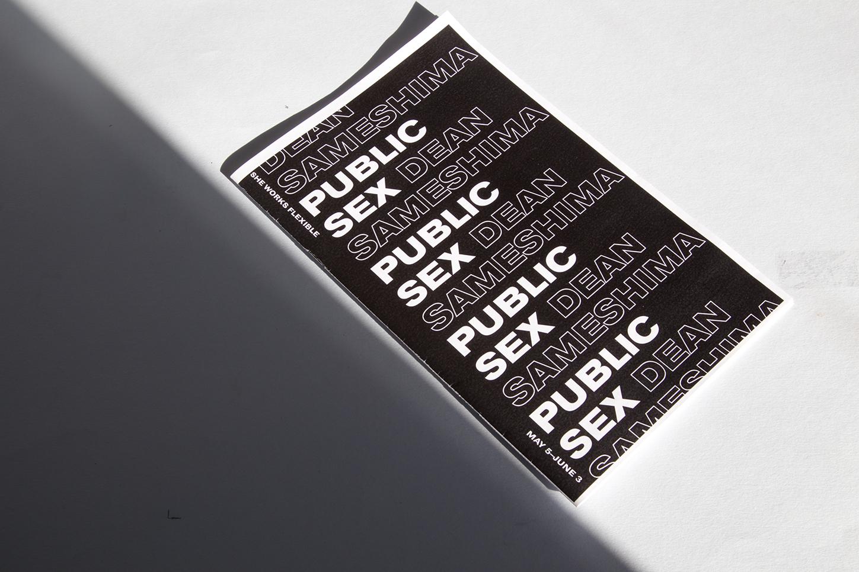 Dean Sameshima: Public Sex Zine/Catalog