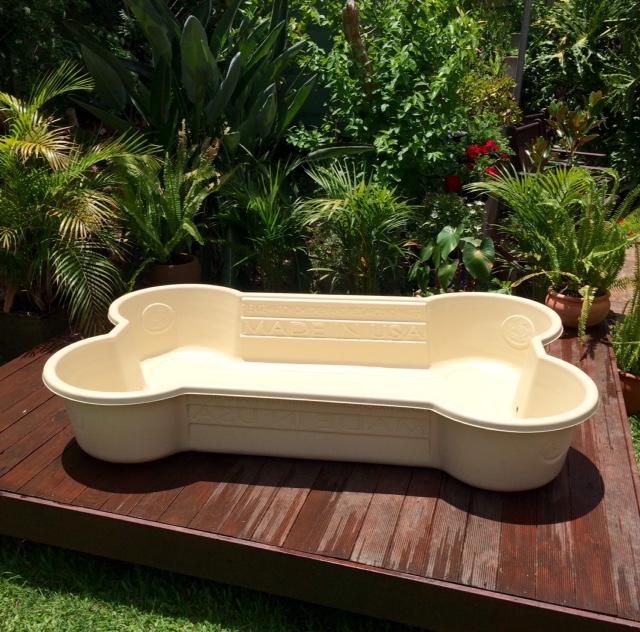 sand dog pool