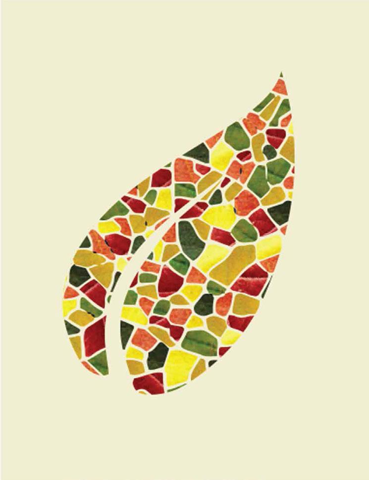 Leaf-shirt-illust-3.jpg