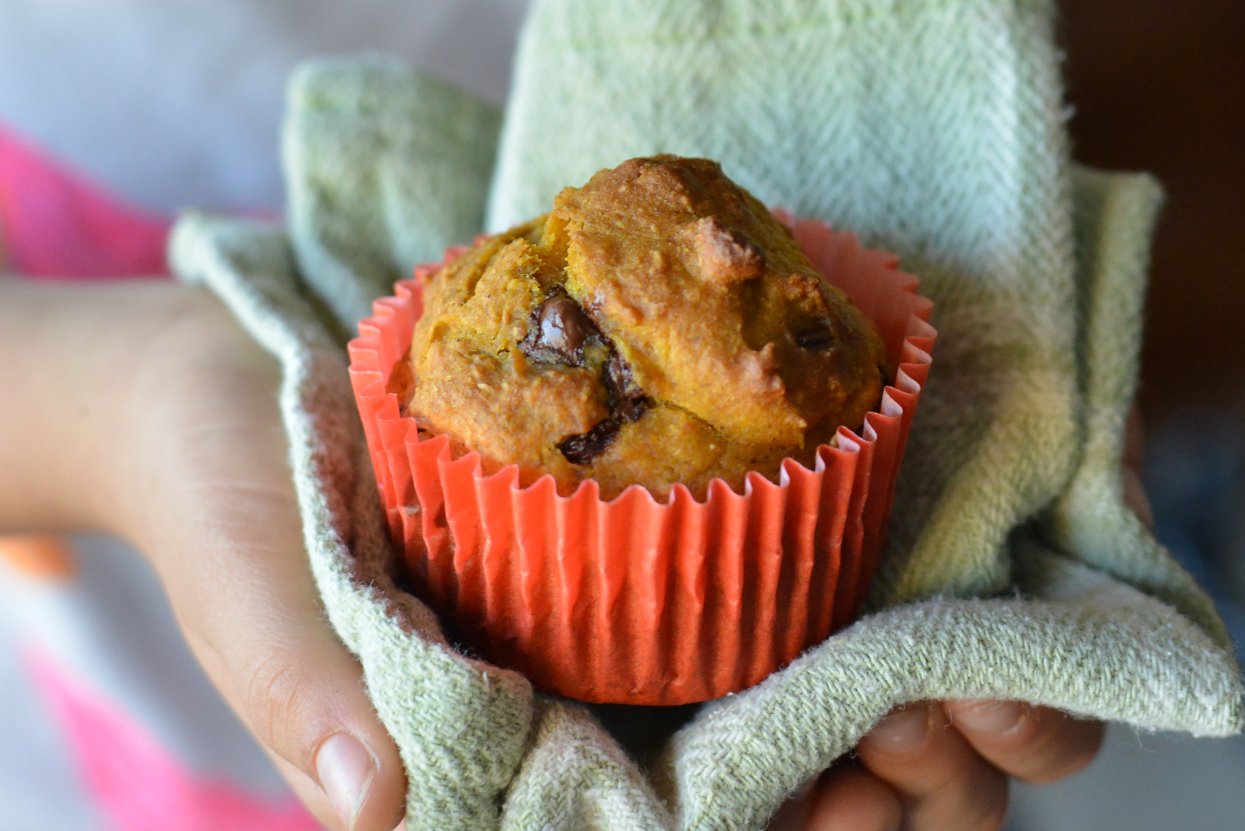 Dark chocolate pumpkin muffins