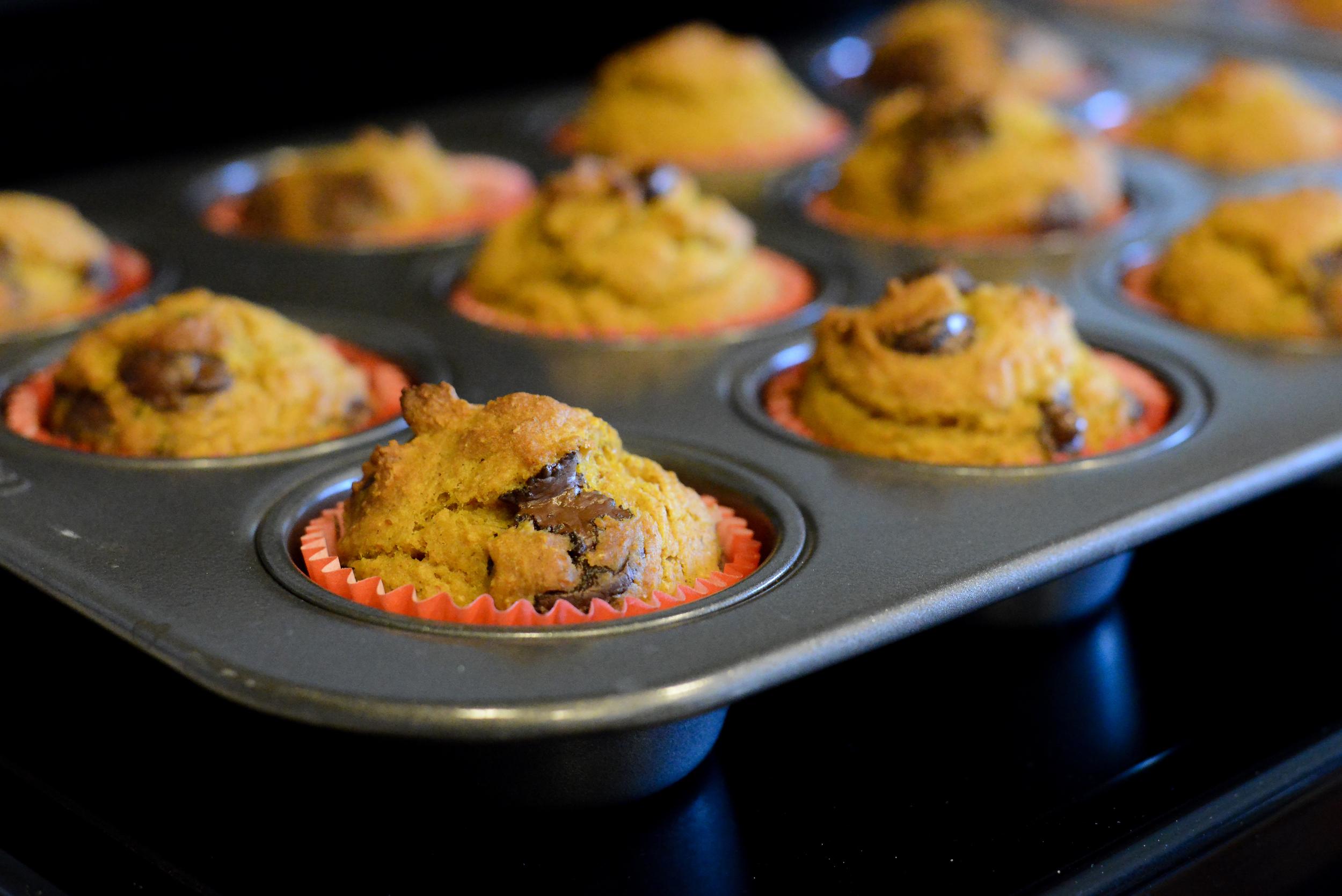 Baked pumpkin dark chocolate muffins