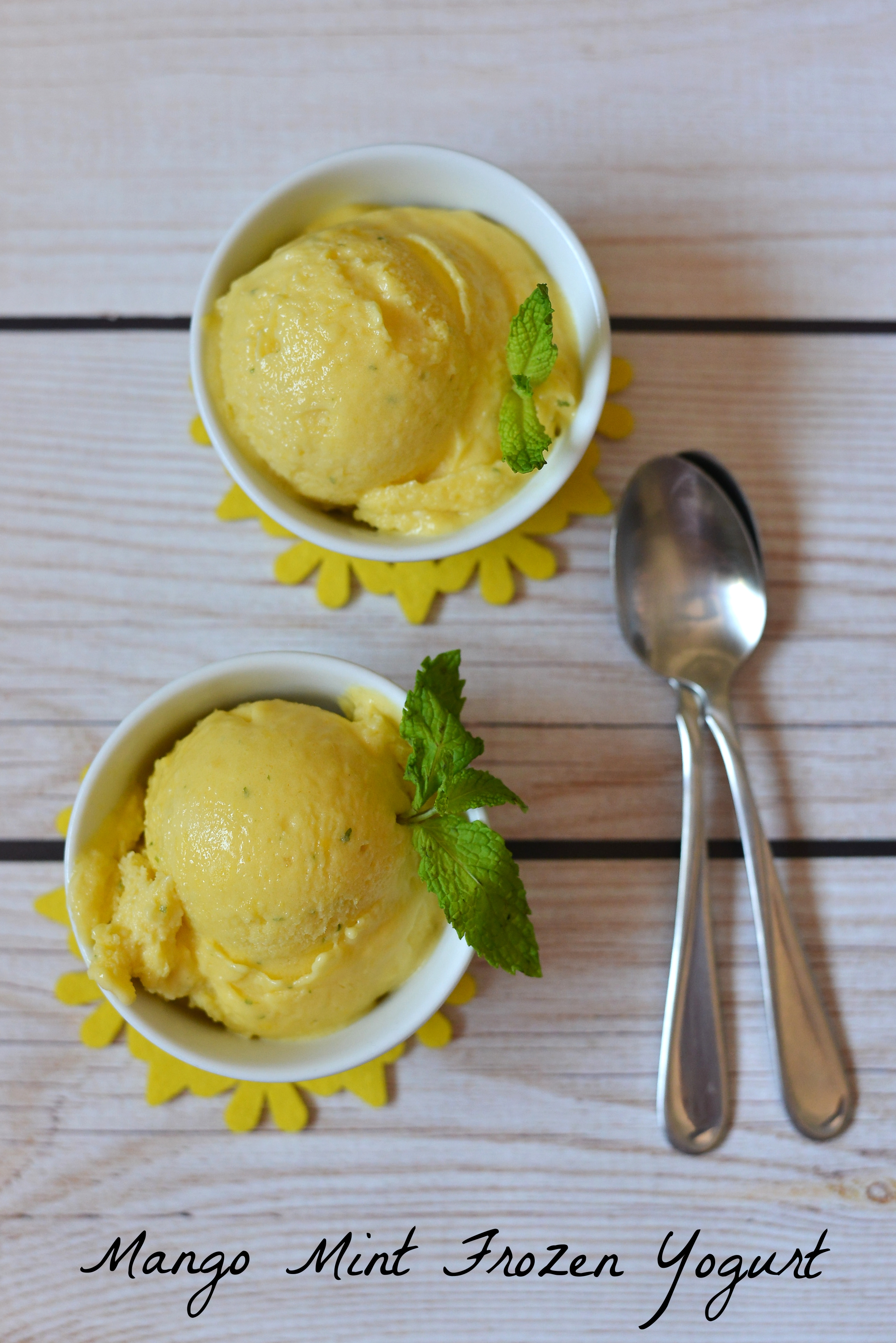 Instant frozen yogurt without the hassle of an ice cream maker!