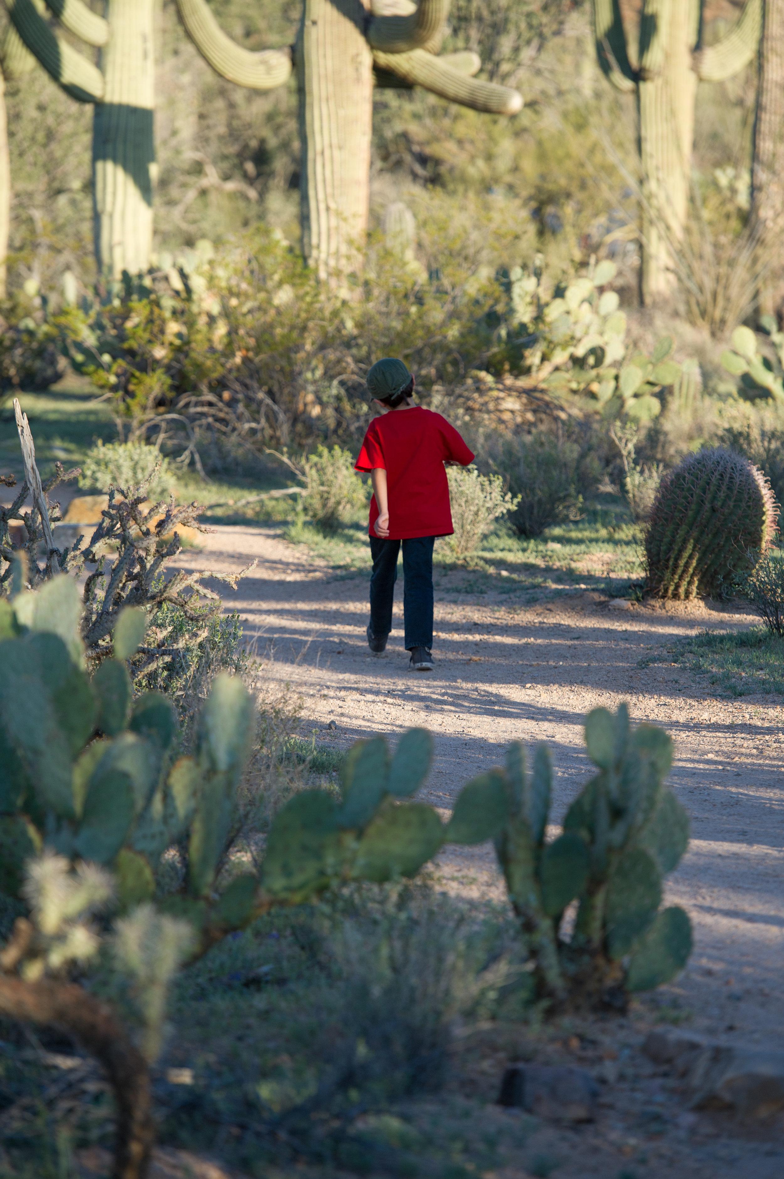 Anthony walking in the desert