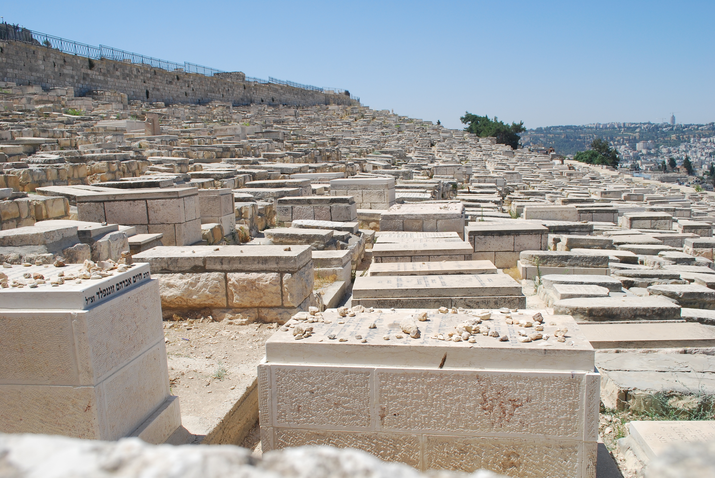 An ancient cemetery just outside the city and surrounding the Mount of Olives.