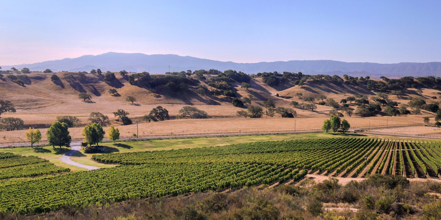 <b>Rally</b> Forget Napa: Head to Santa Barbara Wine Country for Your Next Wine Tasting Trip