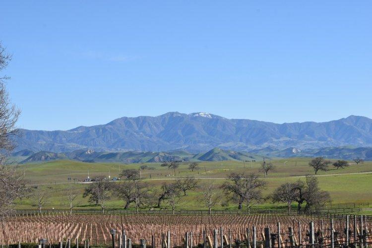<b>SIP ON THIS JUICE</b> Santa Barbara County Wine Tasting Travel Tips